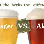 Phân biệt bia ale và bia lager